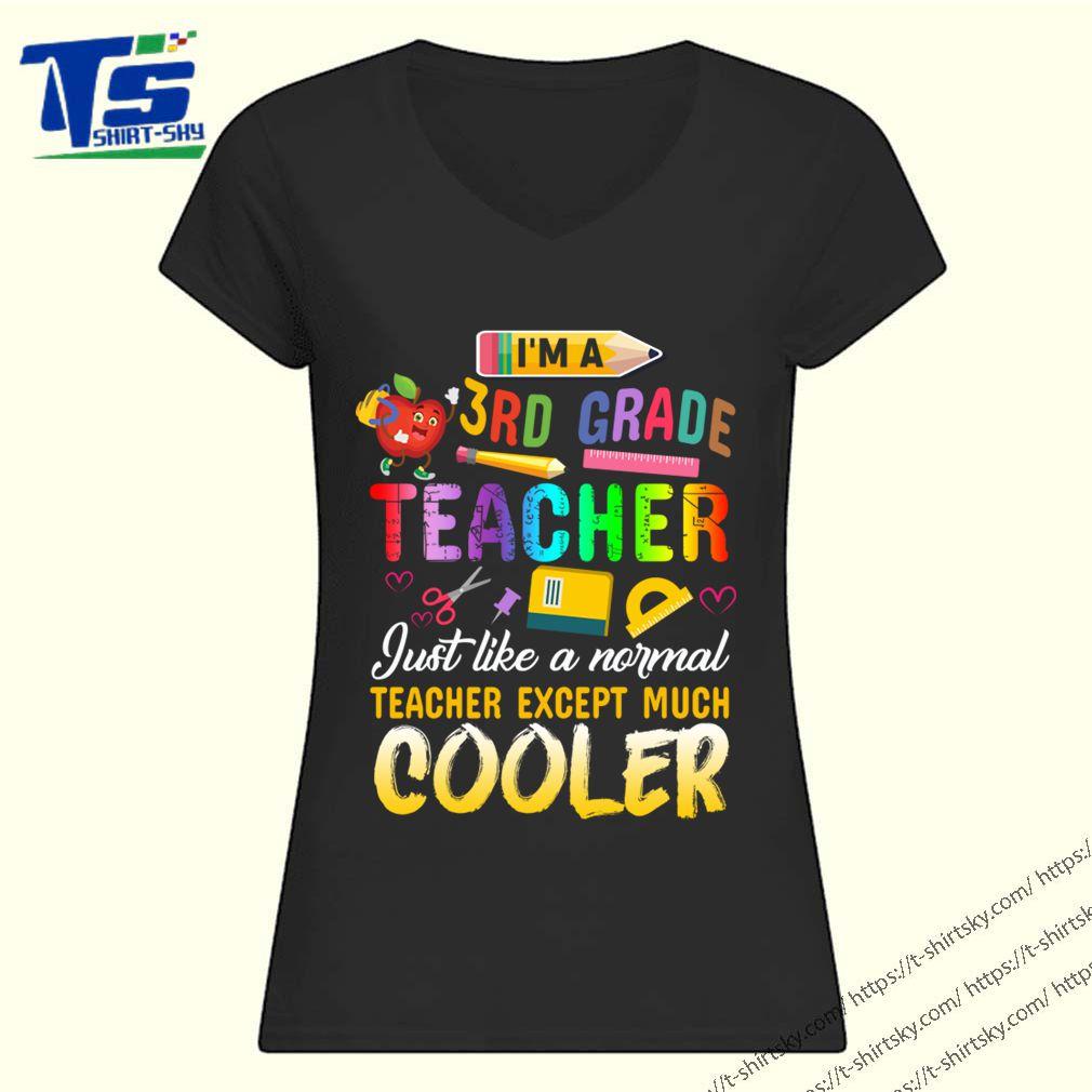 I'm A 3rd Third Grade Teacher Except Much Cooler Funny