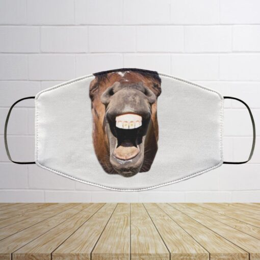 Horse Lovers Mask – Funny Horse Face Washable Reusable Custom – Printed Cloth Face Mask Cover