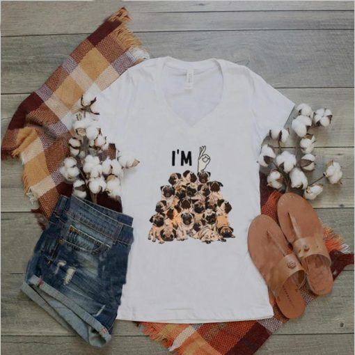 Awesome im Ok Pug Dog Shirt